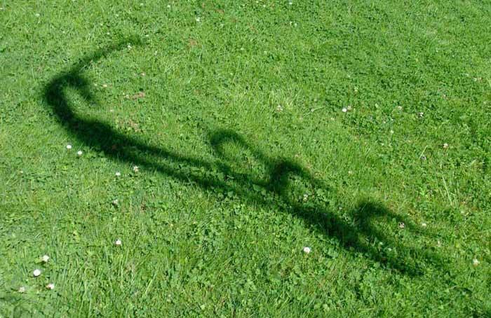 Flug der Träume Schatten