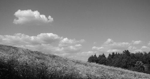 Wolken Himmel Wiese h&w