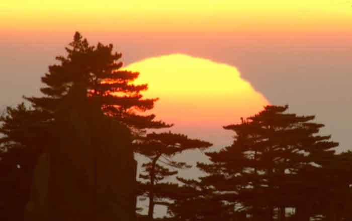 Sonnenuntergang China Bäume